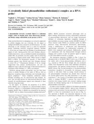 thumnail for NJT882.pdf