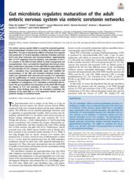 thumnail for 1720017115.full.pdf
