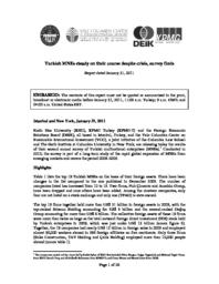 thumnail for EMGP-Turkey-Report-2011.pdf