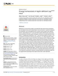 thumnail for journal.pone.0189784.pdf