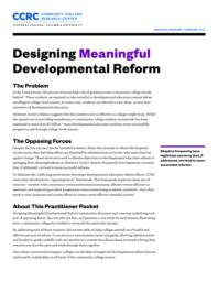 thumnail for designing-meaningful-developmental-reform-research-overview.pdf