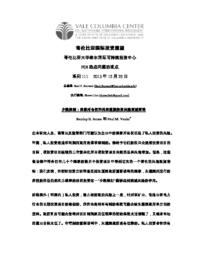 thumnail for No_111_-_James_and_Vaaler_-_FINAL_-_CHINESE_version.pdf