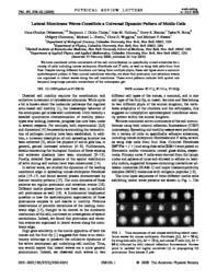 thumnail for PhysRevLett.97.038102.pdf