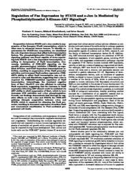 thumnail for JBC_2002_Ivanov.pdf