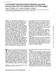 thumnail for J_Cell_Biol-1988-Steinberg-887-96.pdf