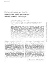 thumnail for J_Cell_Biol-1980-Phaire-Washington-634-40.pdf