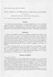 thumnail for Ivanov_1983_Proteins.pdf