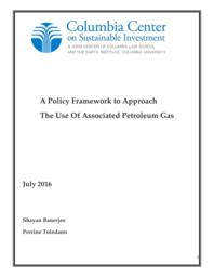 thumnail for A_policy_framework_for_the_use_of_APG_-_July_2016-_CCSI.pdf