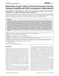 thumnail for journal.pgen.1004165.PDF