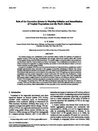 thumnail for Duvel_et_al_MWR_2017.pdf