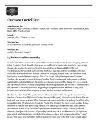 thumnail for Cartellieri_WFPP.pdf