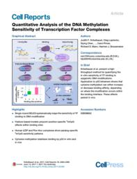 thumnail for Quantitative Analysis of the DNA Methylation Sensitivity of Transcription Factor Complexes.pdf