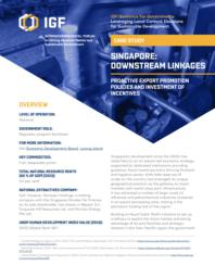 thumnail for case-study-singapore-downstream-linkages.pdf