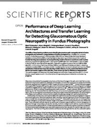 Performance of Deep Learning Architectures and Transfer