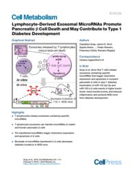 thumnail for Lymphocyte-Derived Exosomal MicroRNAs Promote Pancreatic b Cell Death and May Contribute to Type 1 Diabetes Development.pdf