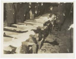 Bodies of Triangle Shirtwaist Factory fire victims at the makeshift morgue on Charities Pier