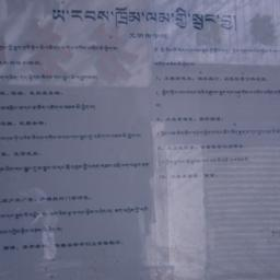 Public notice written in Ti...