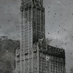Woolworth Building N.Y.