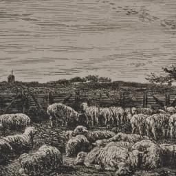 The     Large Sheepfold, Mo...