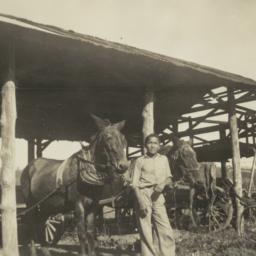 Dan Buckheart with His Mule...