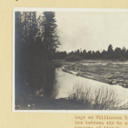 Logs on Williamson River, O...