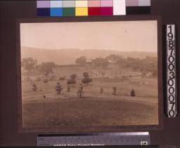 View of house and grounds from distance.