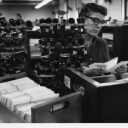 Cataloging Librarian