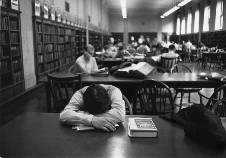 Sleeping in the Library - DLC Catalog